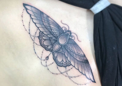 Moth-Single-Colour-Tattoo